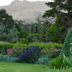 Ross McGill Landscapes | Mcready Project